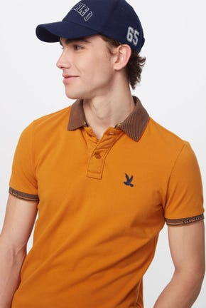 STRIPED RIB-COLLAR POLO