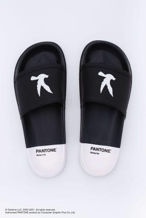 รองเท้าแตะแบบสวมคอลเลคชั่น PANTONE